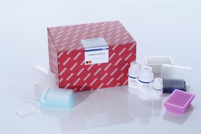 Qiagen Rneasy Mini Kit